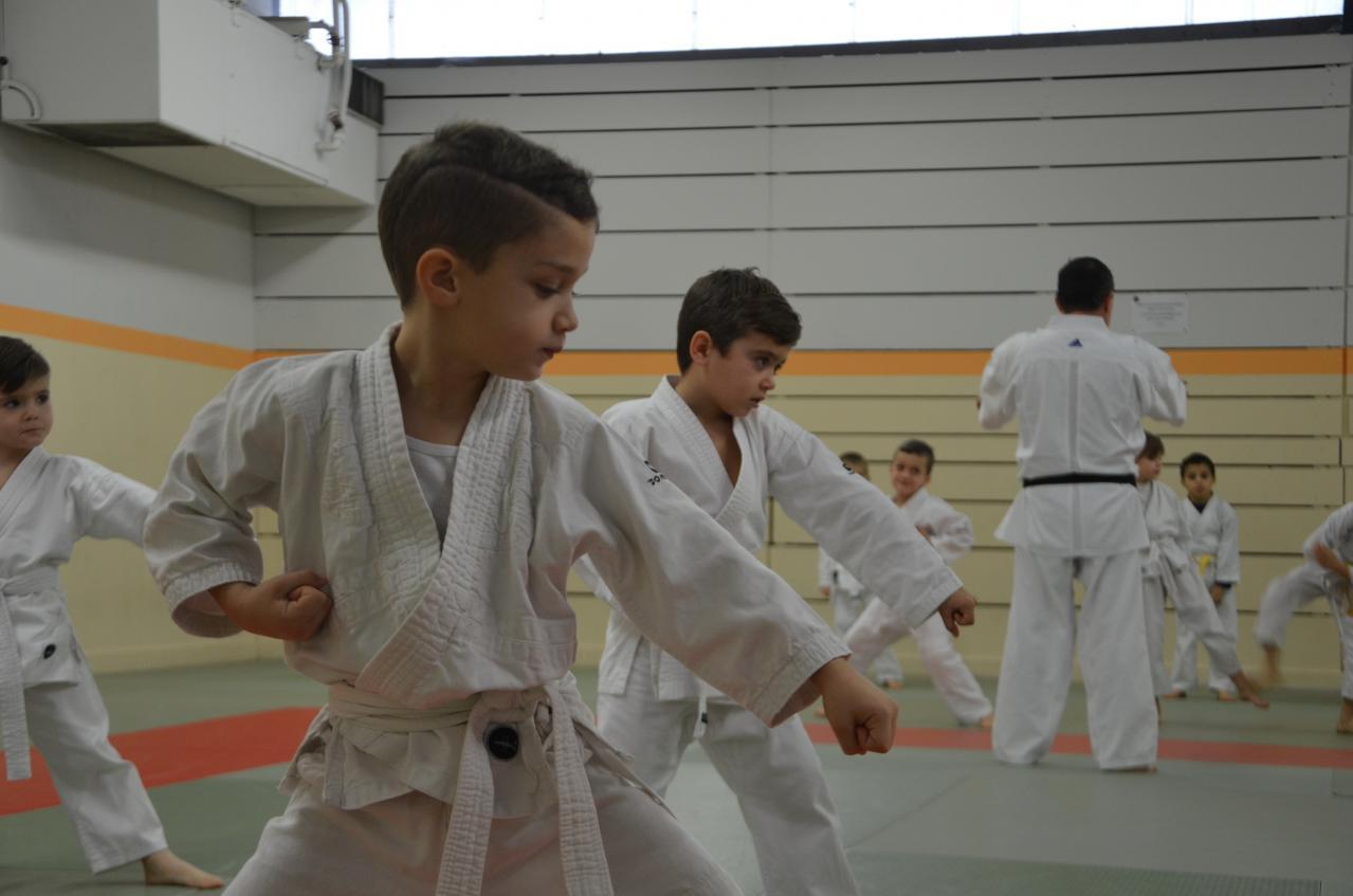 karate valence (1)
