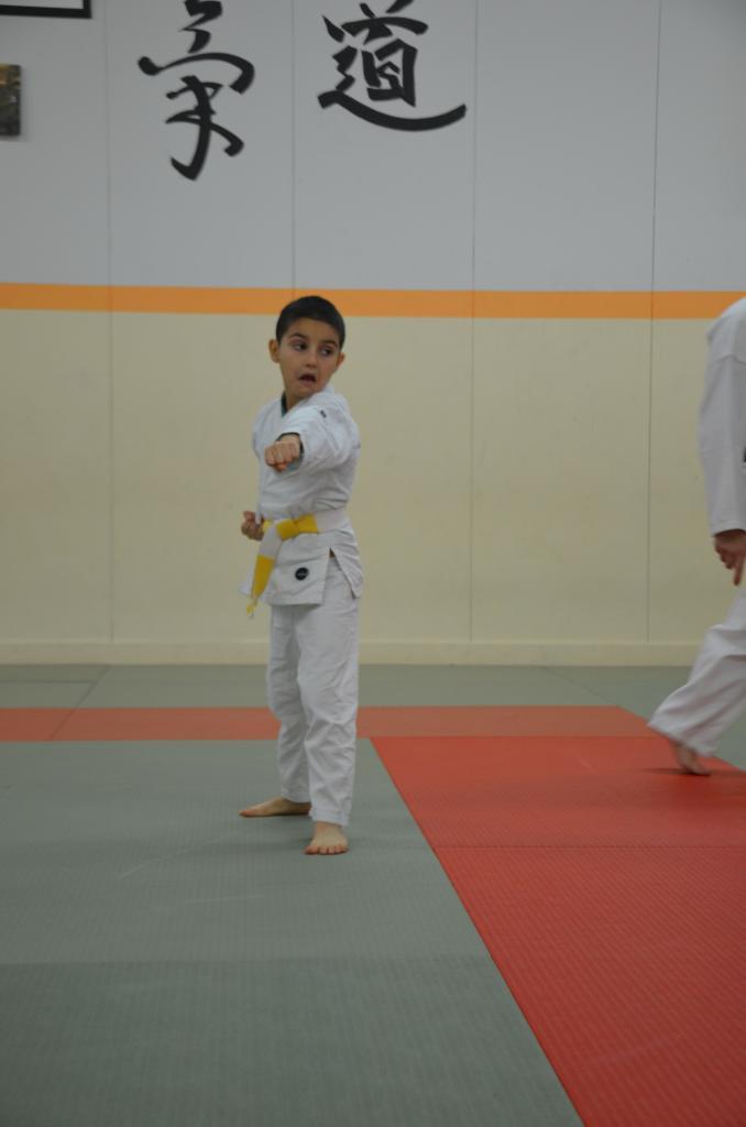 karate valence (10)