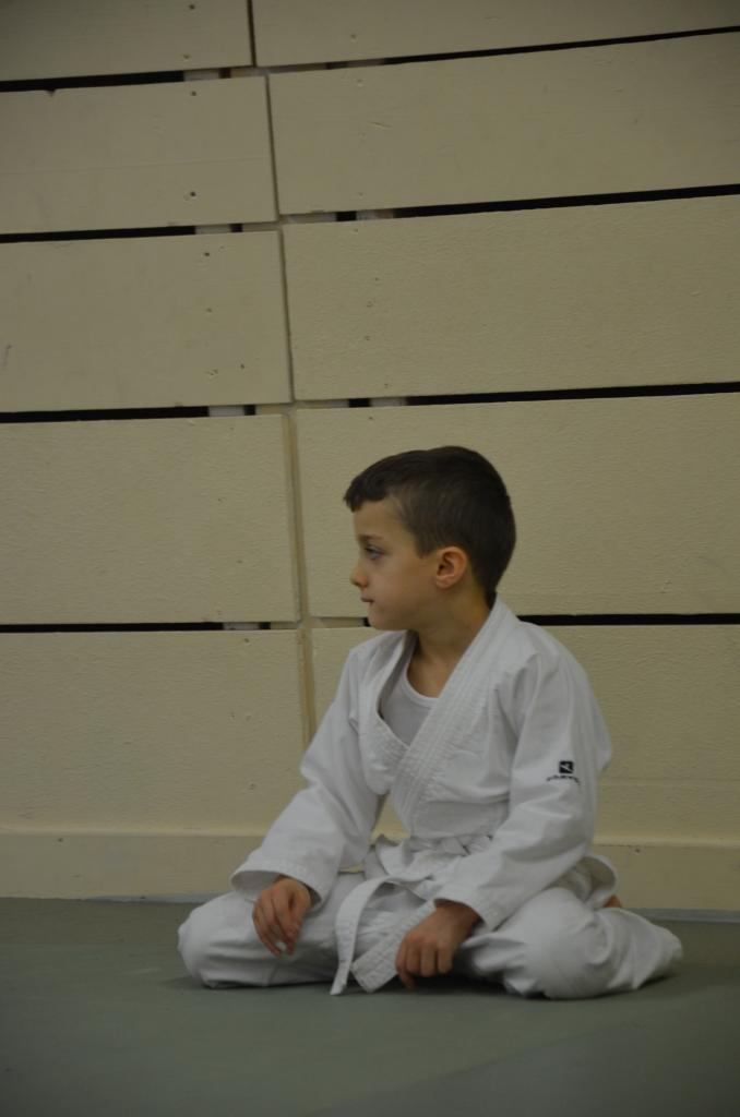 karate valence (11)