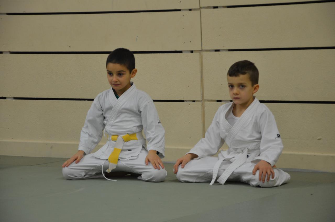 karate valence (13)