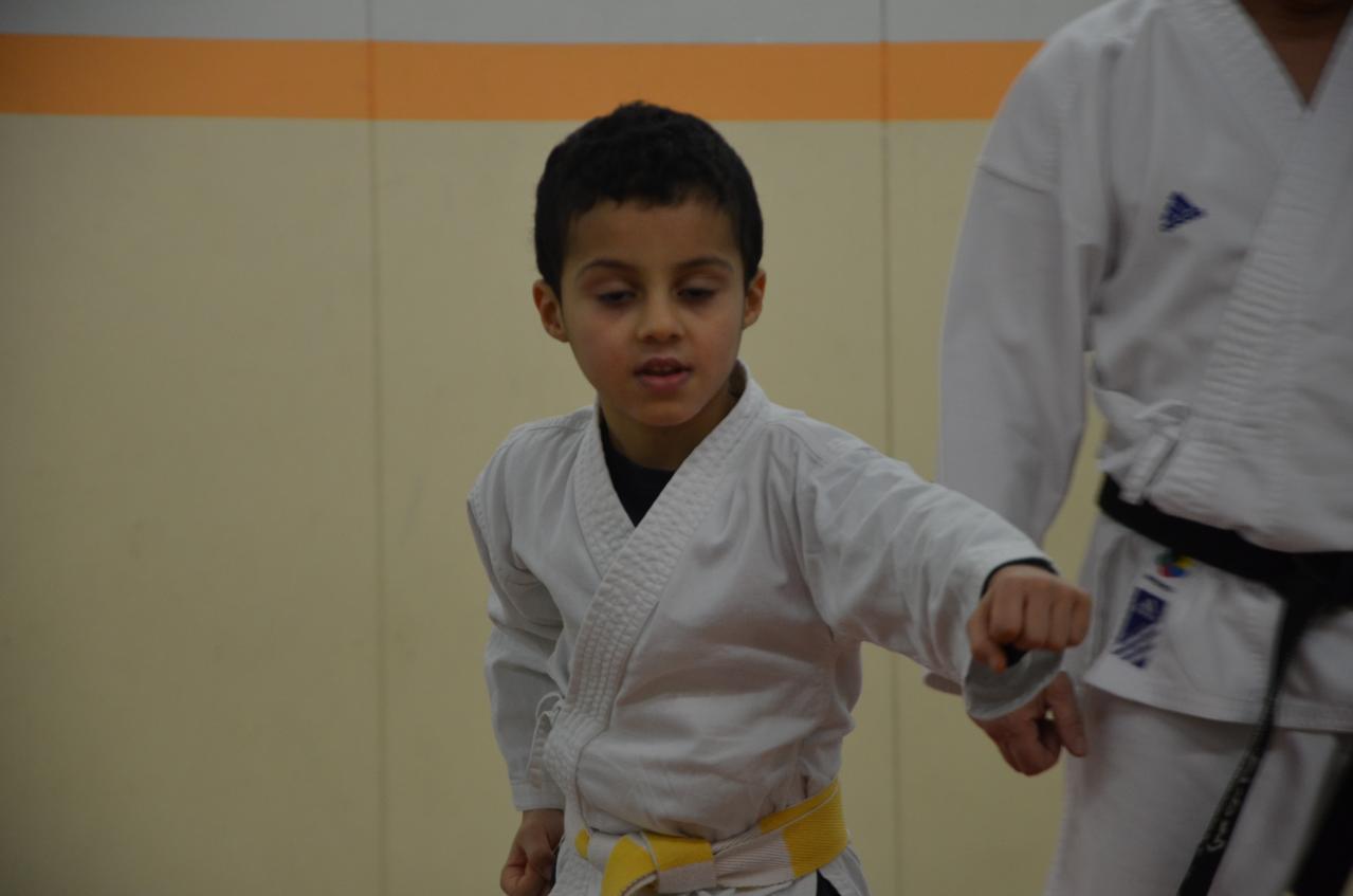 karate valence (15)