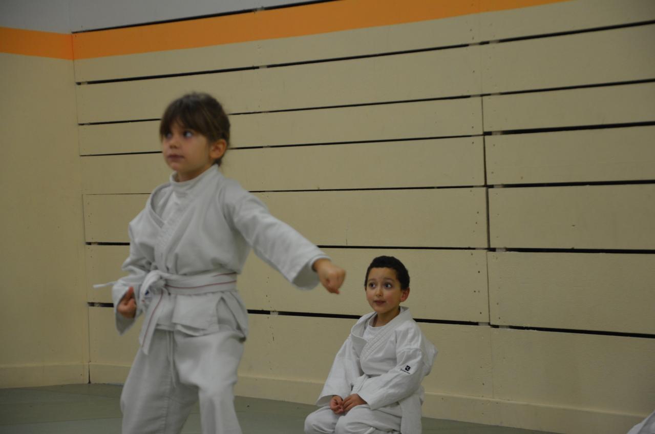 karate valence (16)