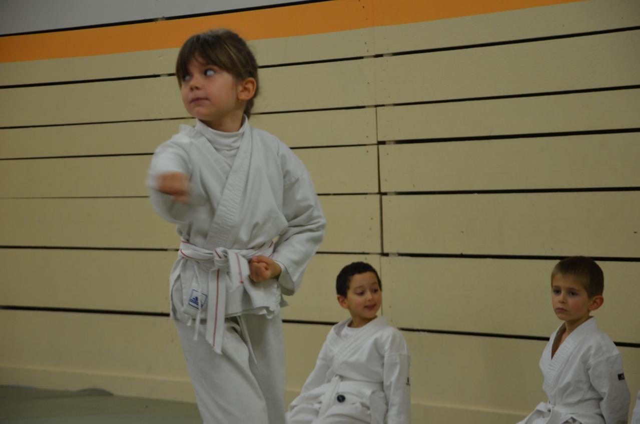 karate valence (17)