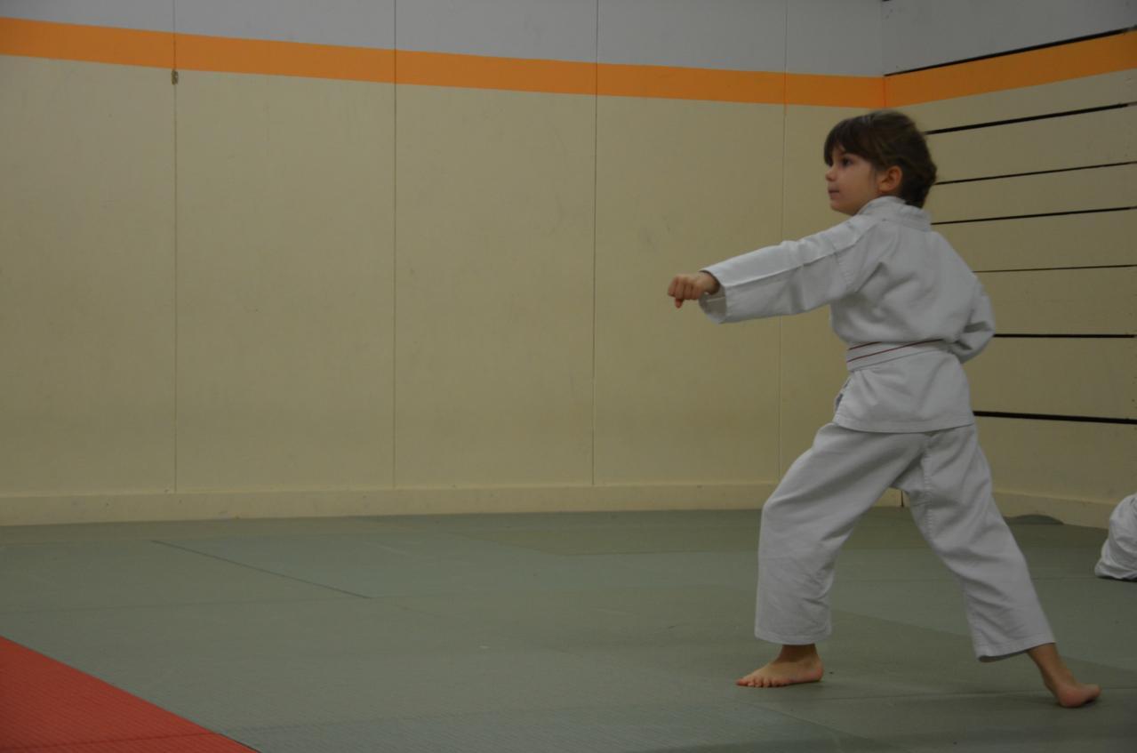 karate valence (18)