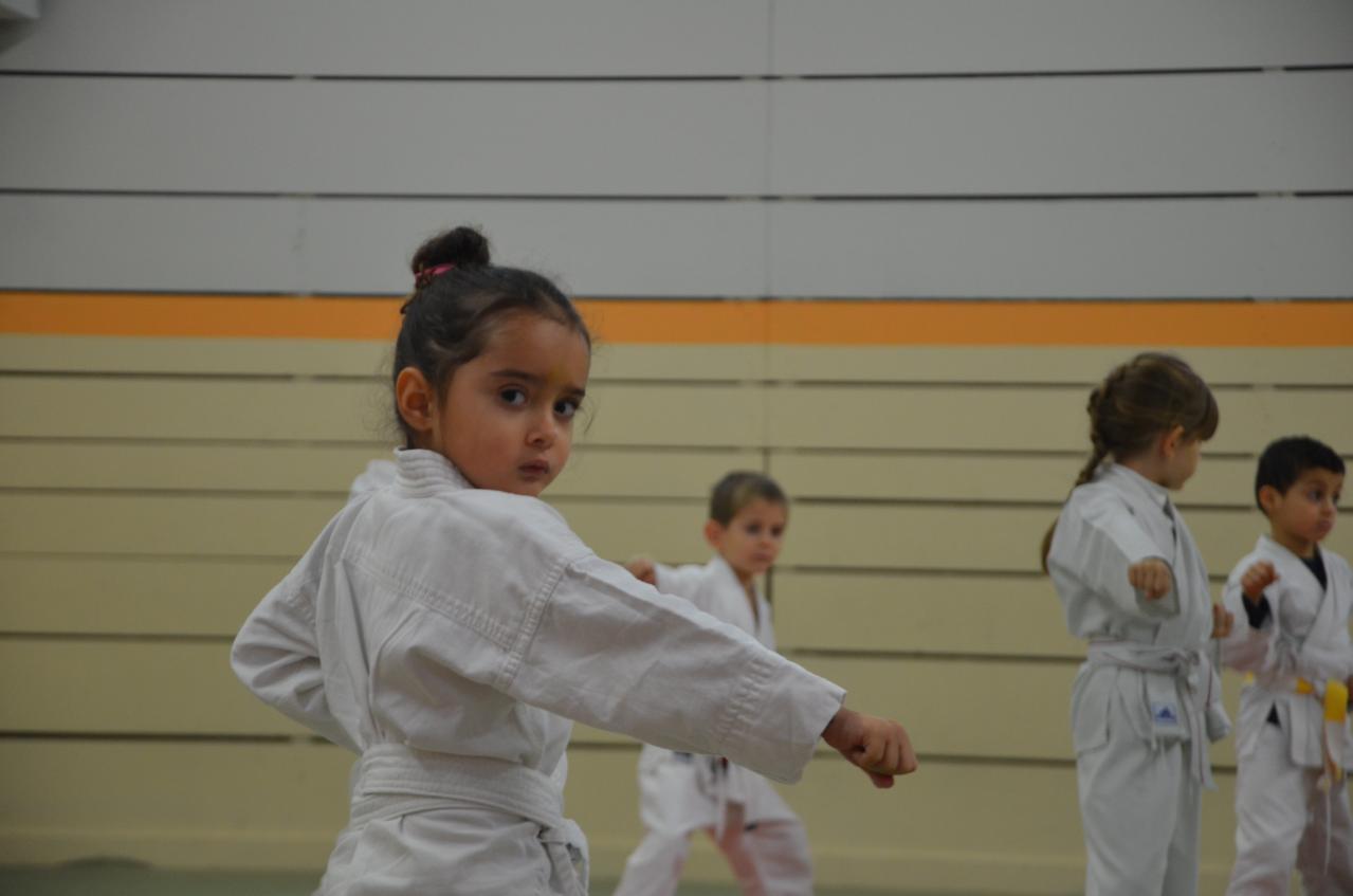 karate valence (2)