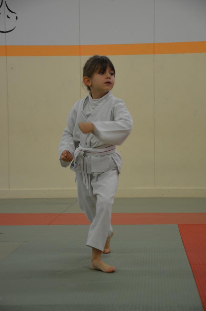karate valence (20)