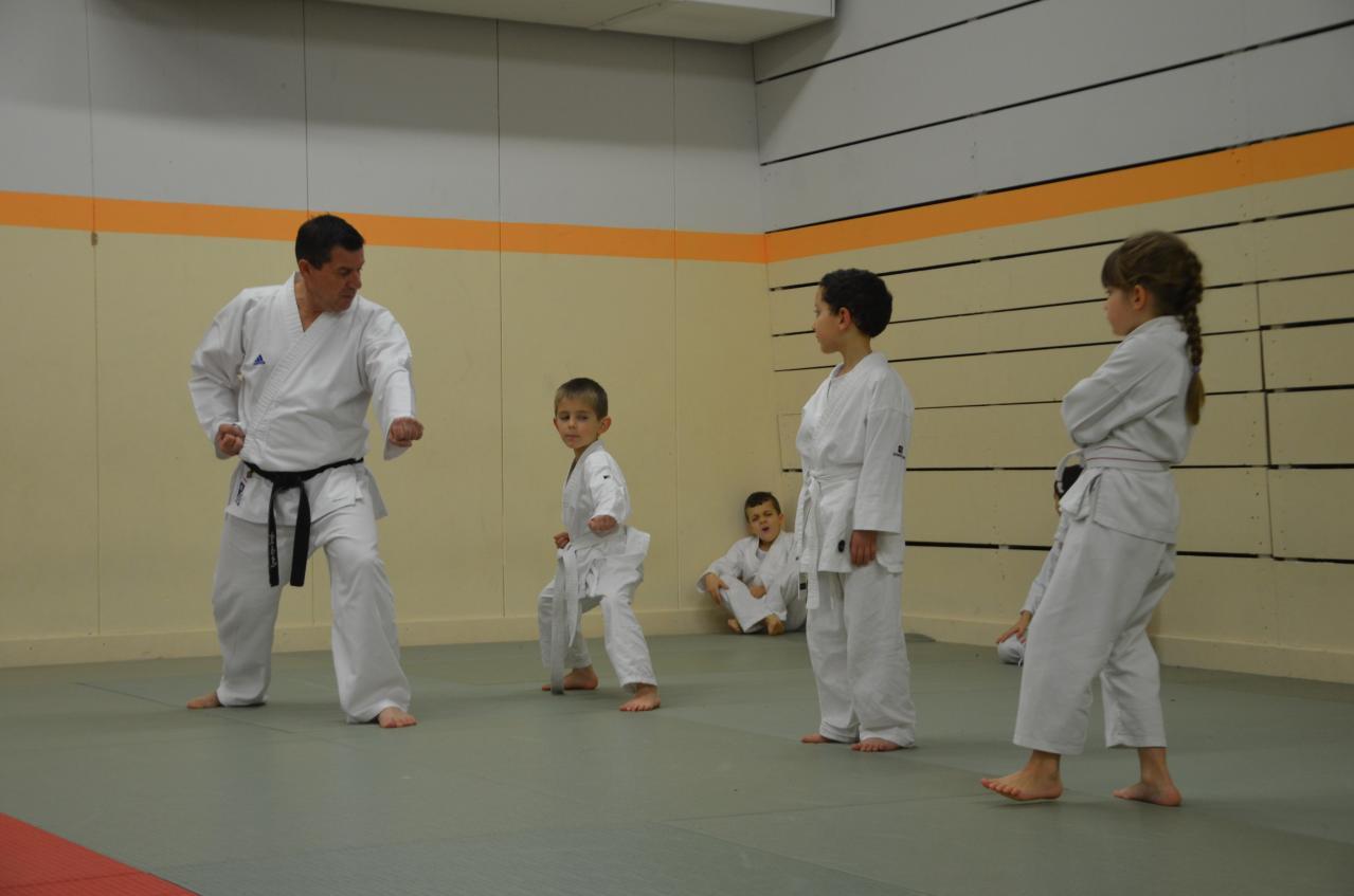 karate valence (21)