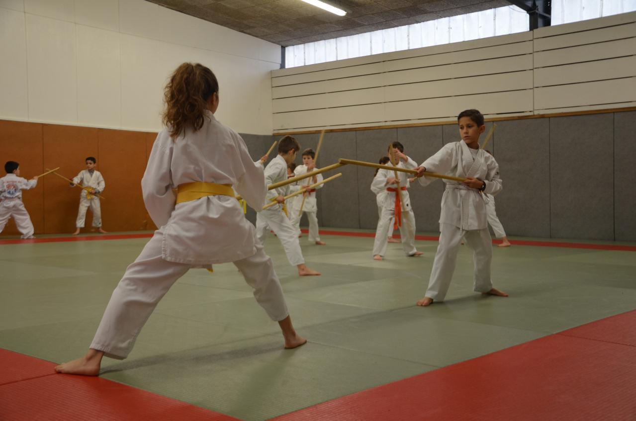 karate valence (23)