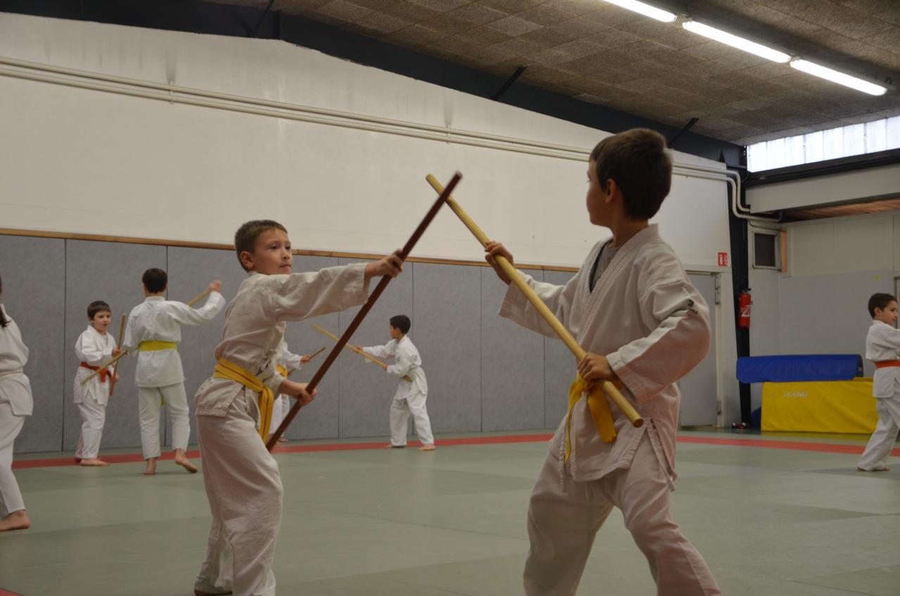 karate valence (26)