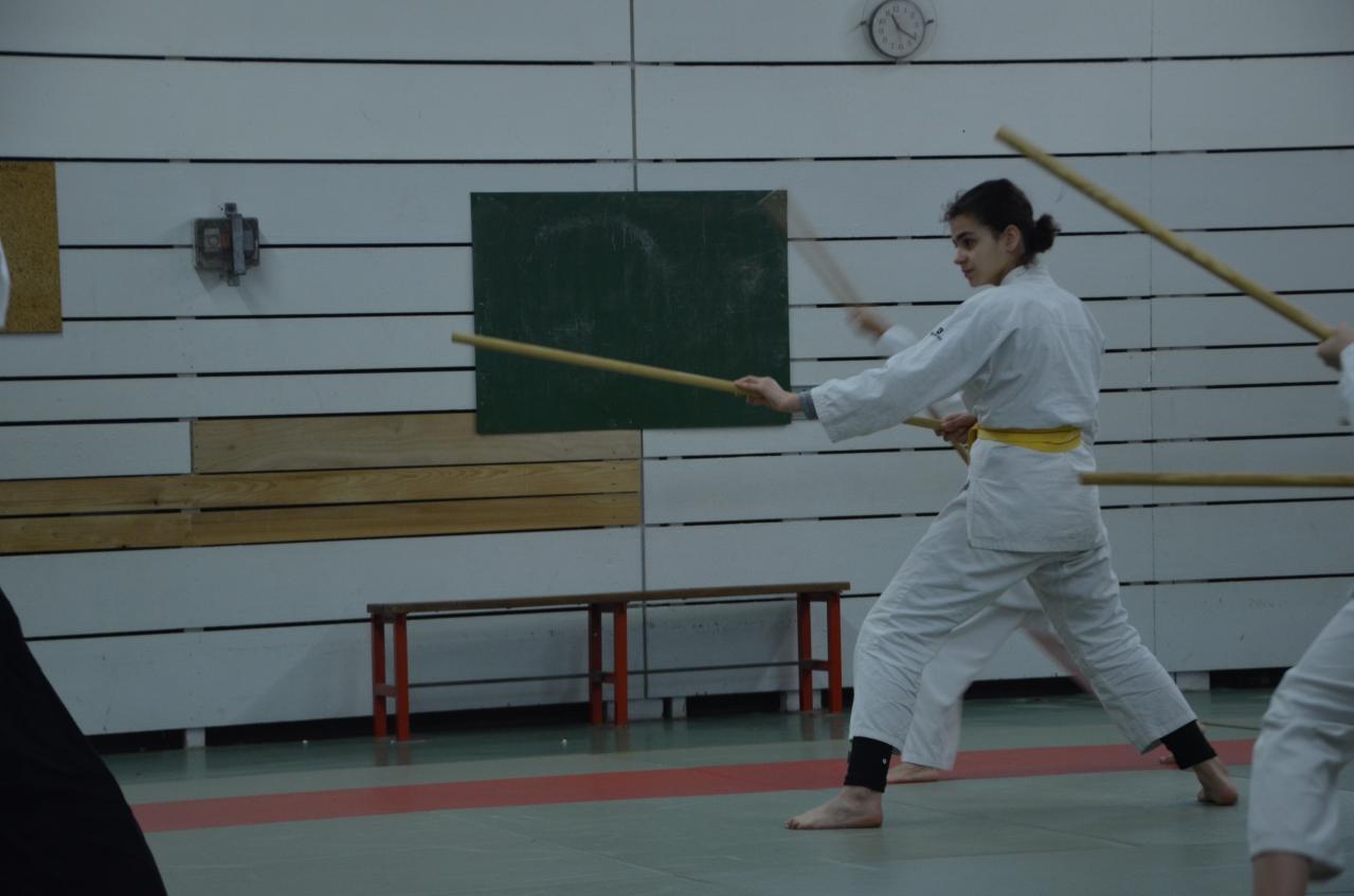 karate valence (28)