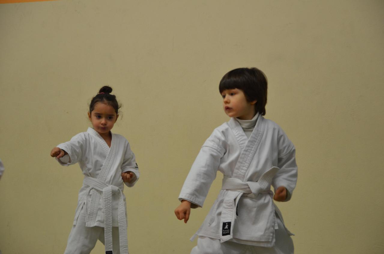 karate valence (3)