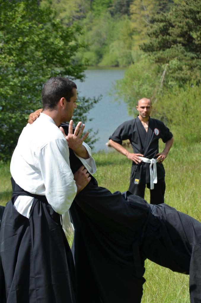 Karate  Valence (319)