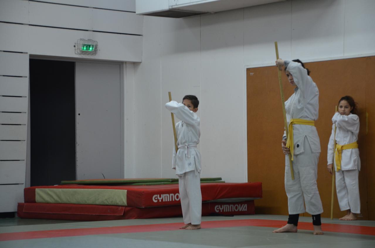 karate valence (33)