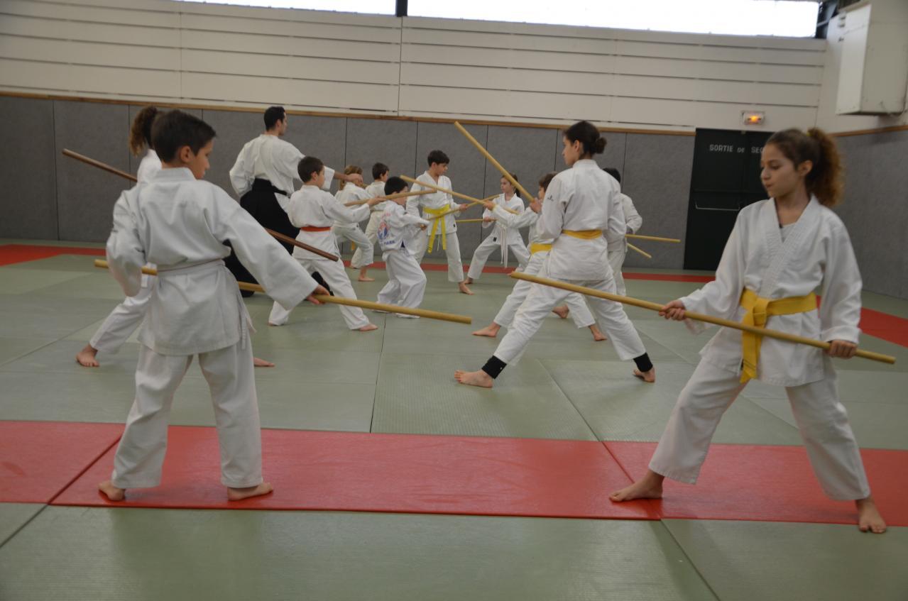 karate valence (34)