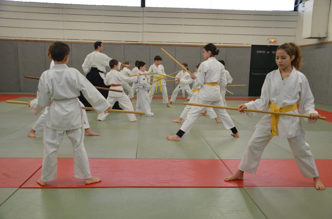 karate valence (35)