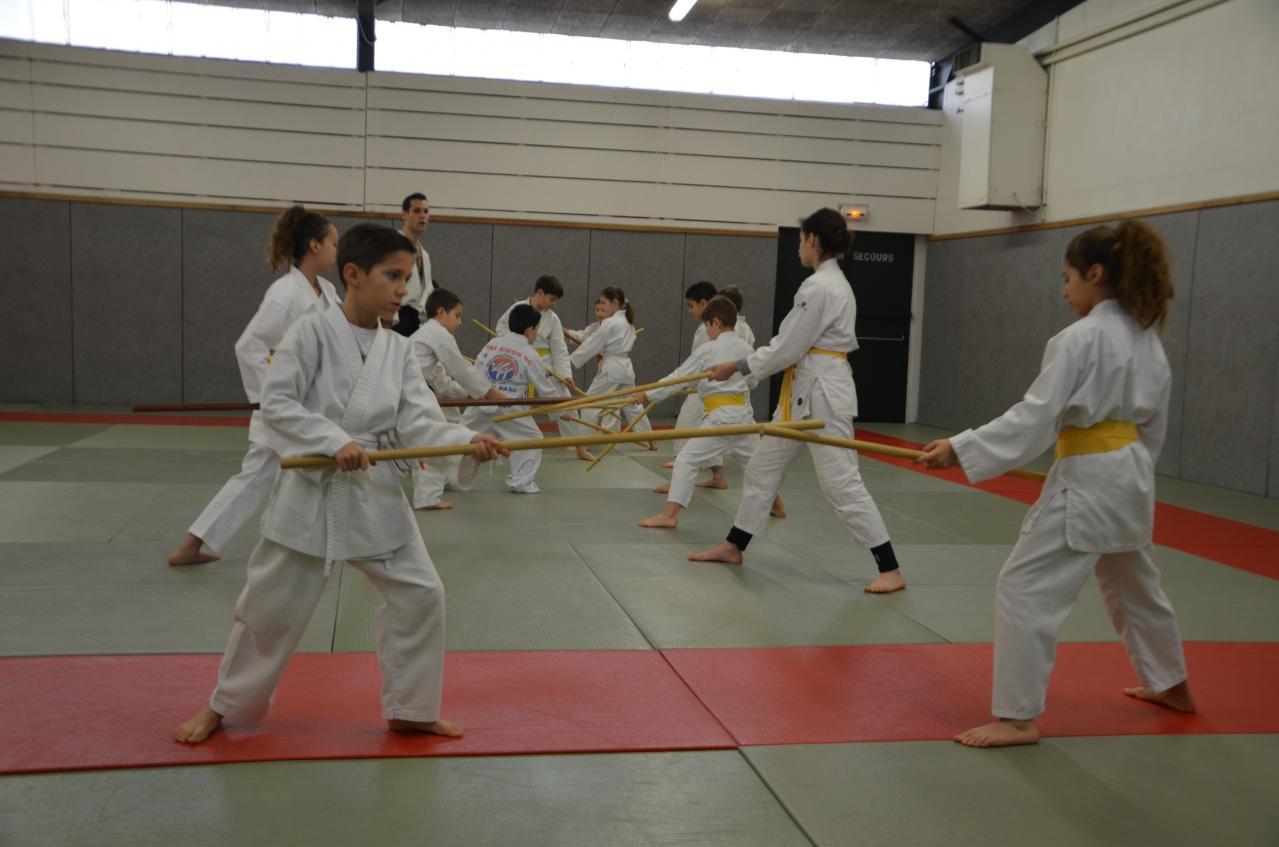karate valence (36)