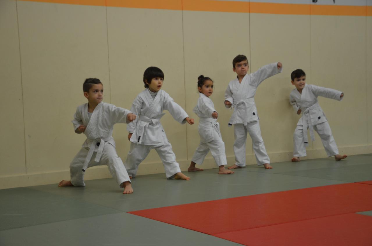 karate valence (37)