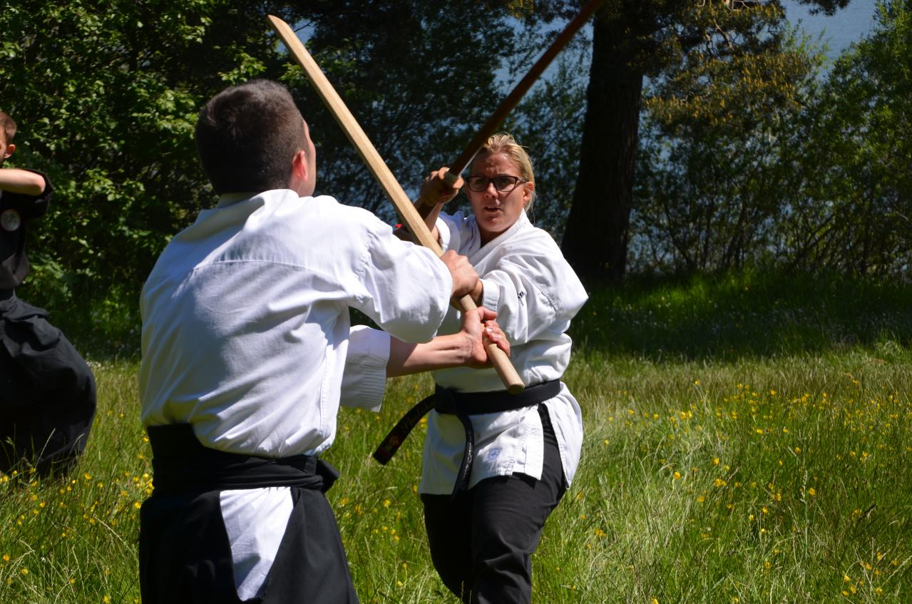 Karate  Valence (377)