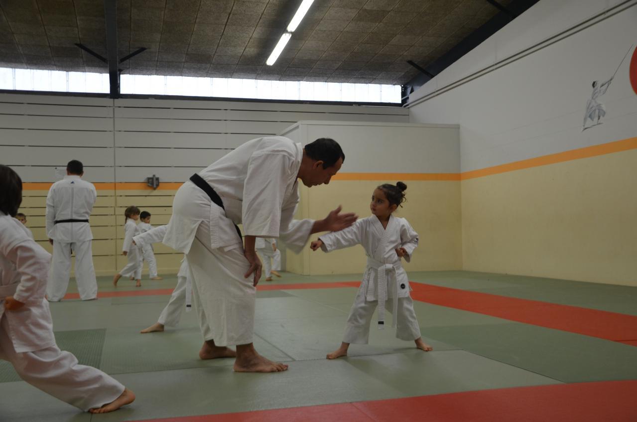 karate valence (4)
