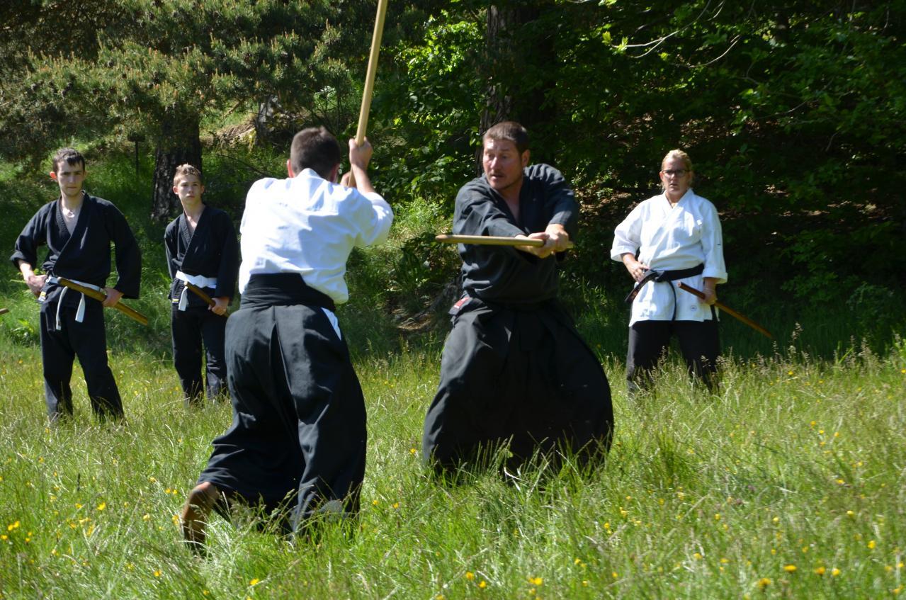 Karate  Valence (401)