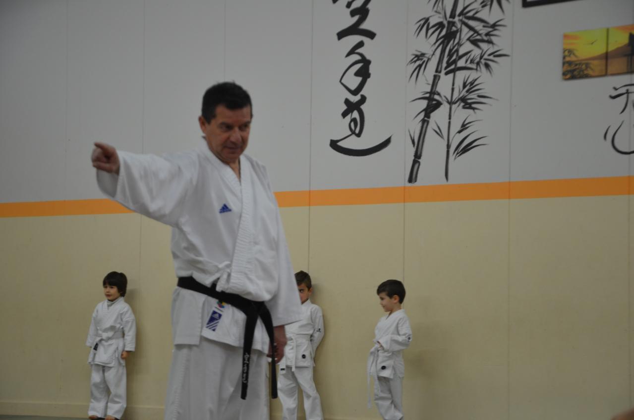 karate valence (6)