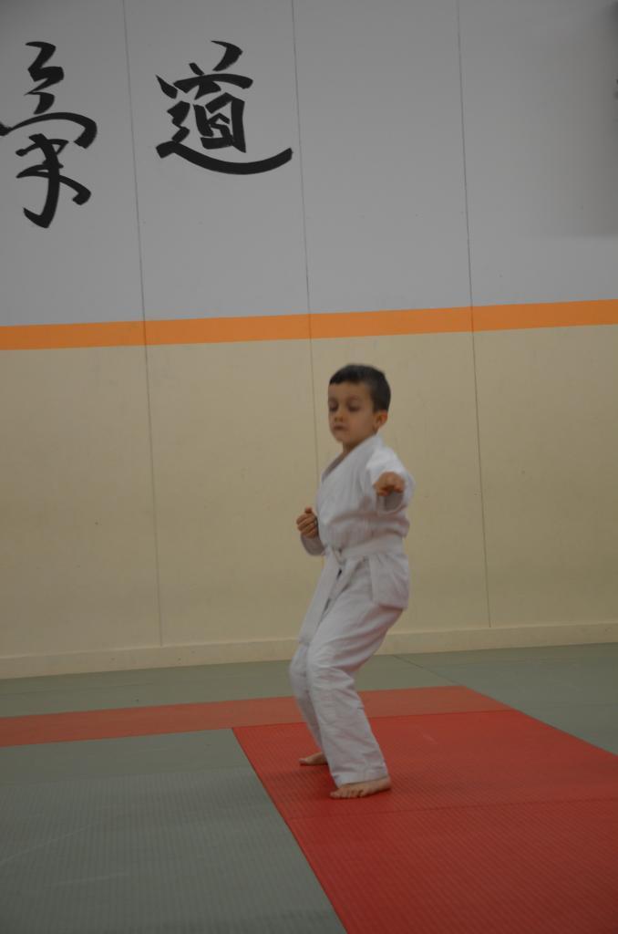 karate valence (8)