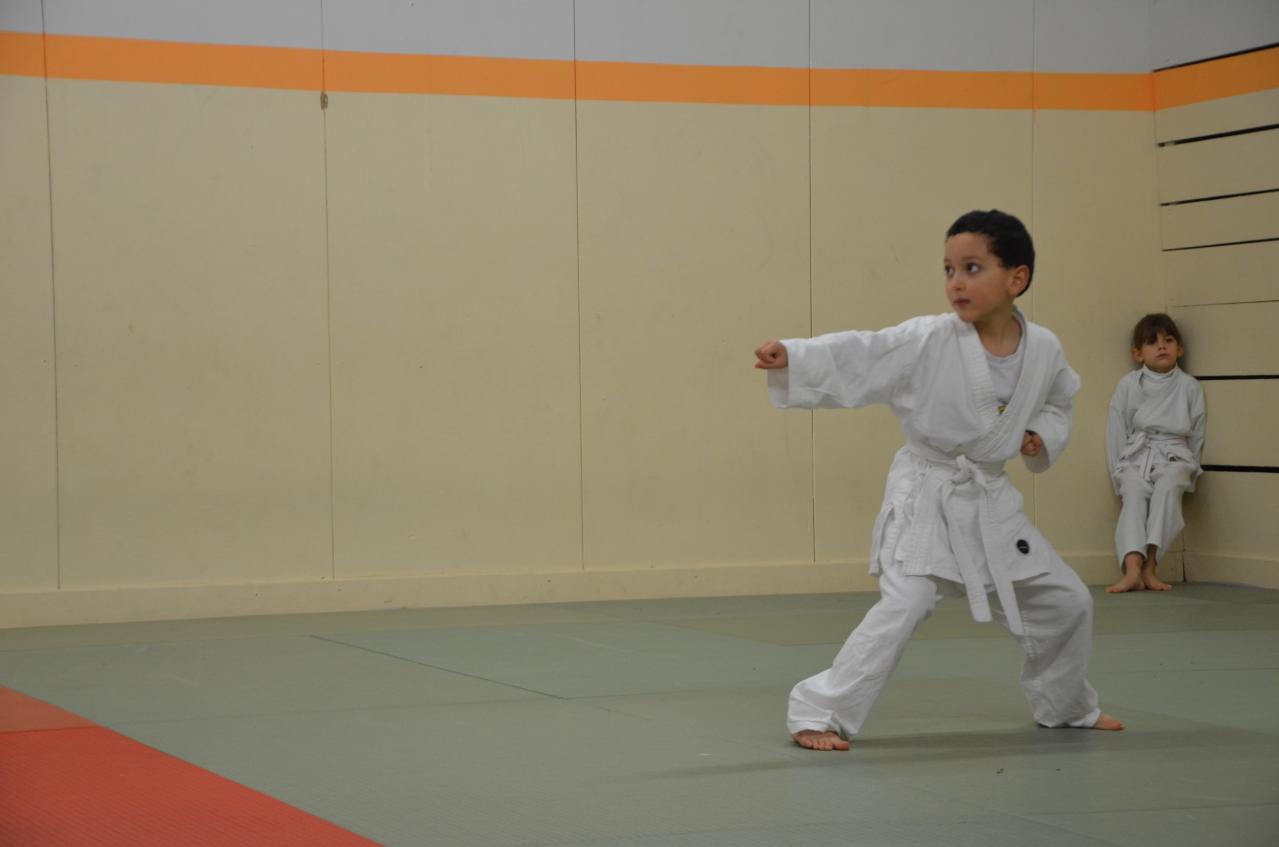 karate valence (9)