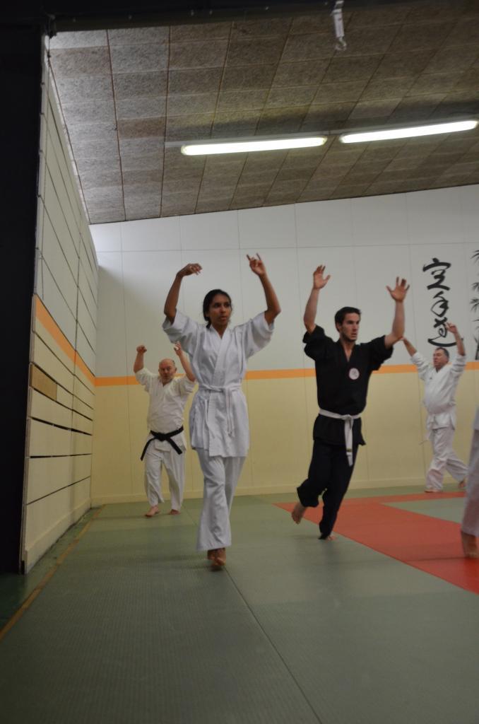 Karate Valence - Drome - Shotokai  (2)