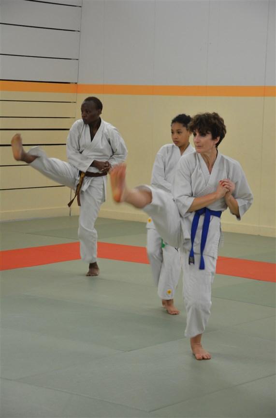 Karaté Valence Shotokai  (18)
